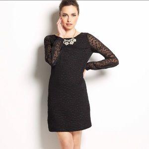 Ann Taylor Little Black Polka Dot Dress